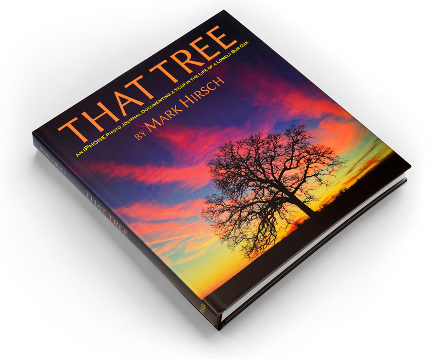 That Tree by Mark Hirsch