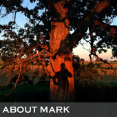 about_mark